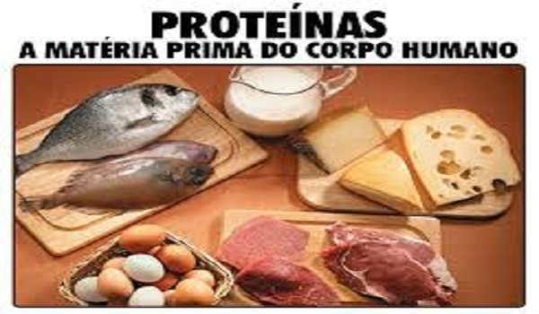 proteínas-materia-prima